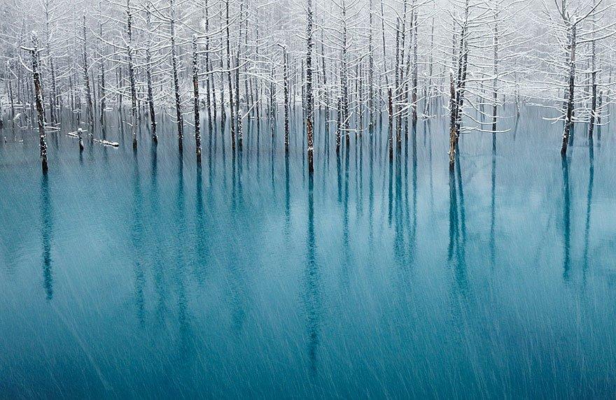 estanque azul de Japón