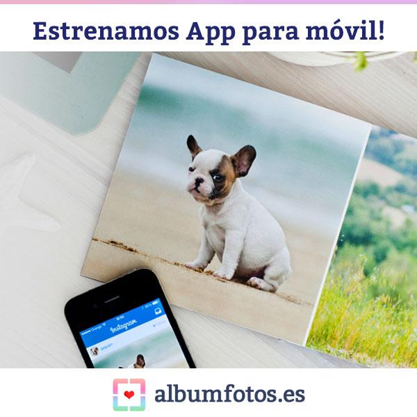 La aplicaci n del programa hofmann ya est disponible para for Primicias ya para movil